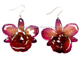 "Chrysotoxum ""Dendrobium"" Orchid Jewelry Earring (Dark Purple)"