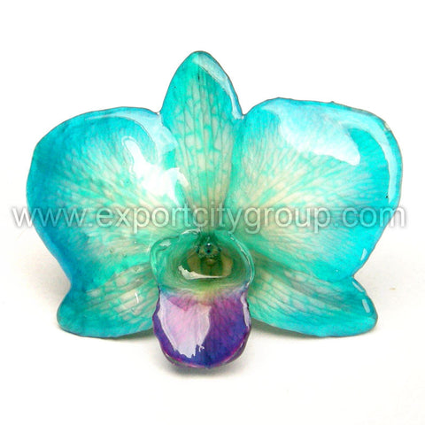 "Diamond ""Dendrobium"" Orchid Jewelry pendant (Blue)"