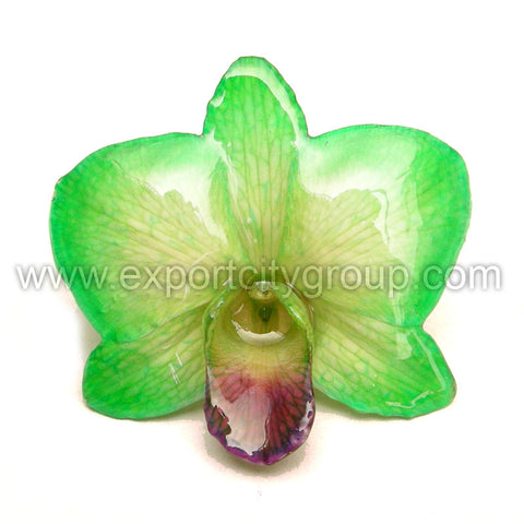 "Diamond ""Dendrobium"" Orchid Jewelry pendant (Light Green)"