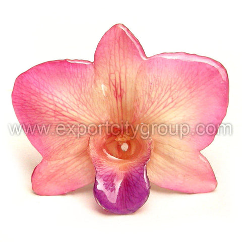 "Diamond ""Dendrobium"" Orchid Jewelry pendant (Light Pink)"