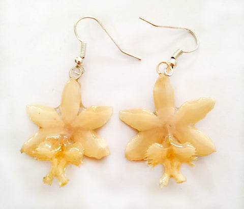 Epidendrum Orchid Jewelry Earring (White)