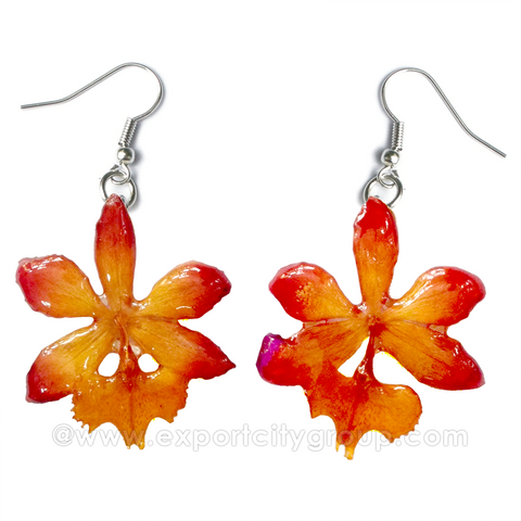 Epidendrum Orchid Jewelry Earring (Orange Kiss)