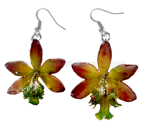 Epidendrum Orchid Jewelry Earring (Purple Green)