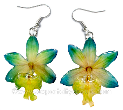 Epidendrum Orchid Jewelry Earring (Yellow Green Turquoise)