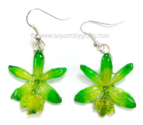 Epidendrum Orchid Jewelry Earring (Green)