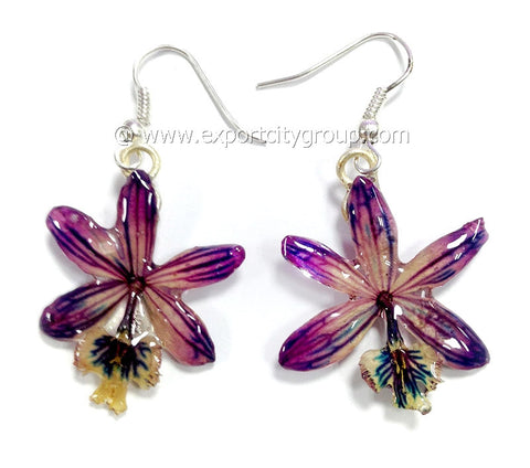 Epidendrum Orchid Jewelry Earring (Purple)