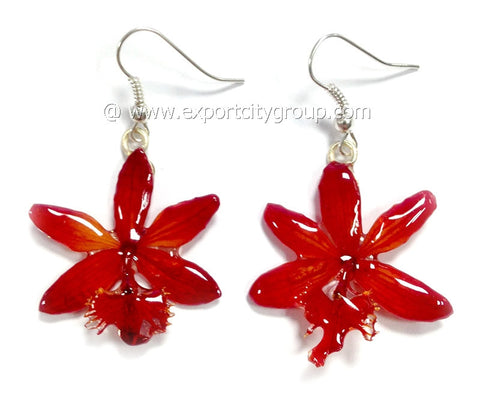Epidendrum Orchid Jewelry Earring (Red)