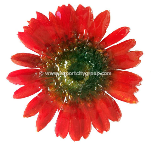 Gerbera Flower Jewelry 2-in-1 pendant/brooch (Hot Red)