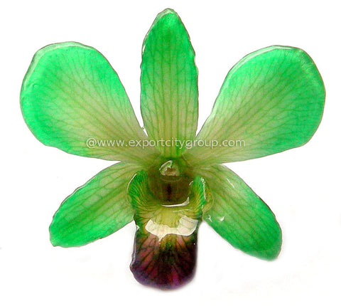 "Lucy ""Dendrobium"" Orchid Pendant (Green)"