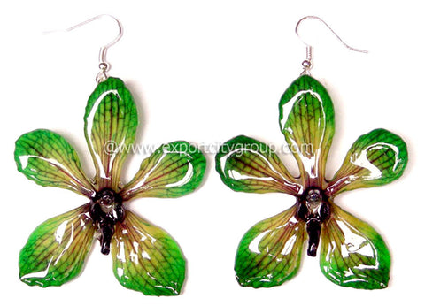 Mokara Orchid Jewelry Earring (Green)