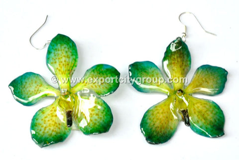 Mokara Orchid Jewelry Earring (Green Yellow)