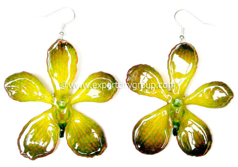Mokara Orchid Jewelry Earring (Lemon Yellow)