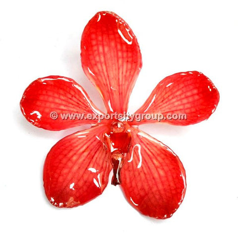 Mokara Orchid Jewelry Pendant (Red)