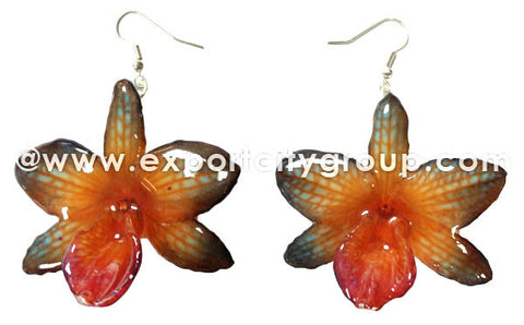 "Nobile ""Dendrobium"" Orchid Jewelry Earring (Orange 2 Tone)"