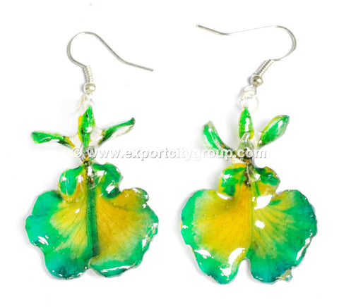 "Oncidium Orchid Jewelry Earring ""Full"" (Green 2Tone)"