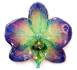 Phalaenopsis BLUME Orchid Jewelry Pendant (Blue Green)