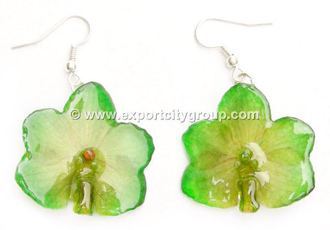 Vanda CANDY Orchid Jewelry Earring (Light Green)
