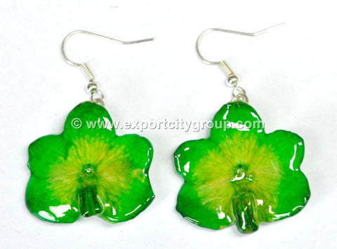 Vanda CANDY Orchid Jewelry Earring (Green)
