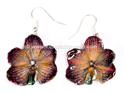 Vanda CANDY Orchid Jewelry Earring (Purple Brown)
