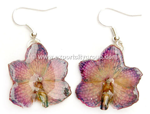 Vanda CANDY Orchid Jewelry Earring (Purple)