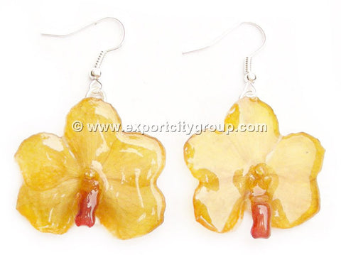Vanda CANDY Orchid Jewelry Earring (Yellow)
