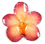Vanda Orchid Jewelry Pendant (Purple/Orange)