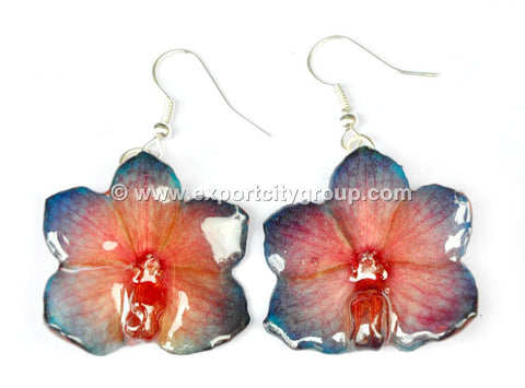Vanda CANDY Orchid Jewelry Earring (Blue Red)