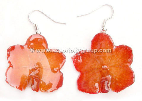 Vanda CANDY Orchid Jewelry Earring (Orange)