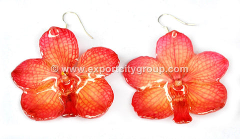 Vanda CANDY Orchid Jewelry Earring (Red)