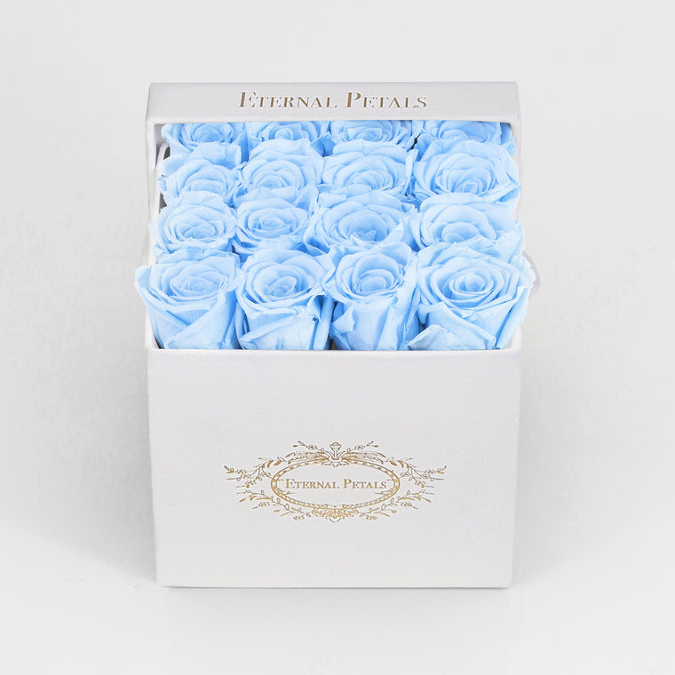 BABY BLUE | WHITE FLOWER BOX