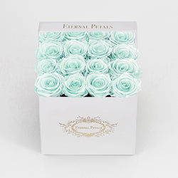 TIFFANY SATIN | WHITE VELVET