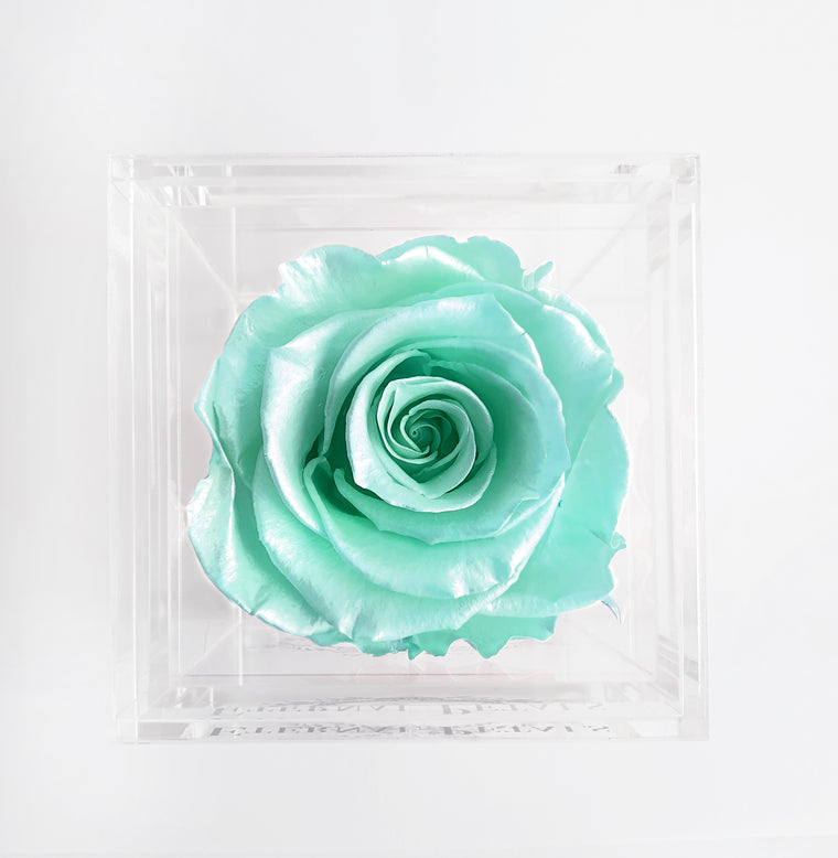 SOLO | TIFFANY SATIN