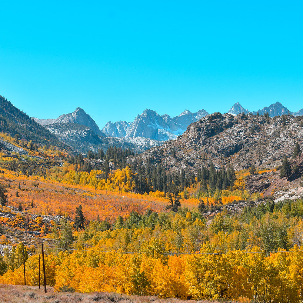Fall Road Trip to the Eastern Sierra