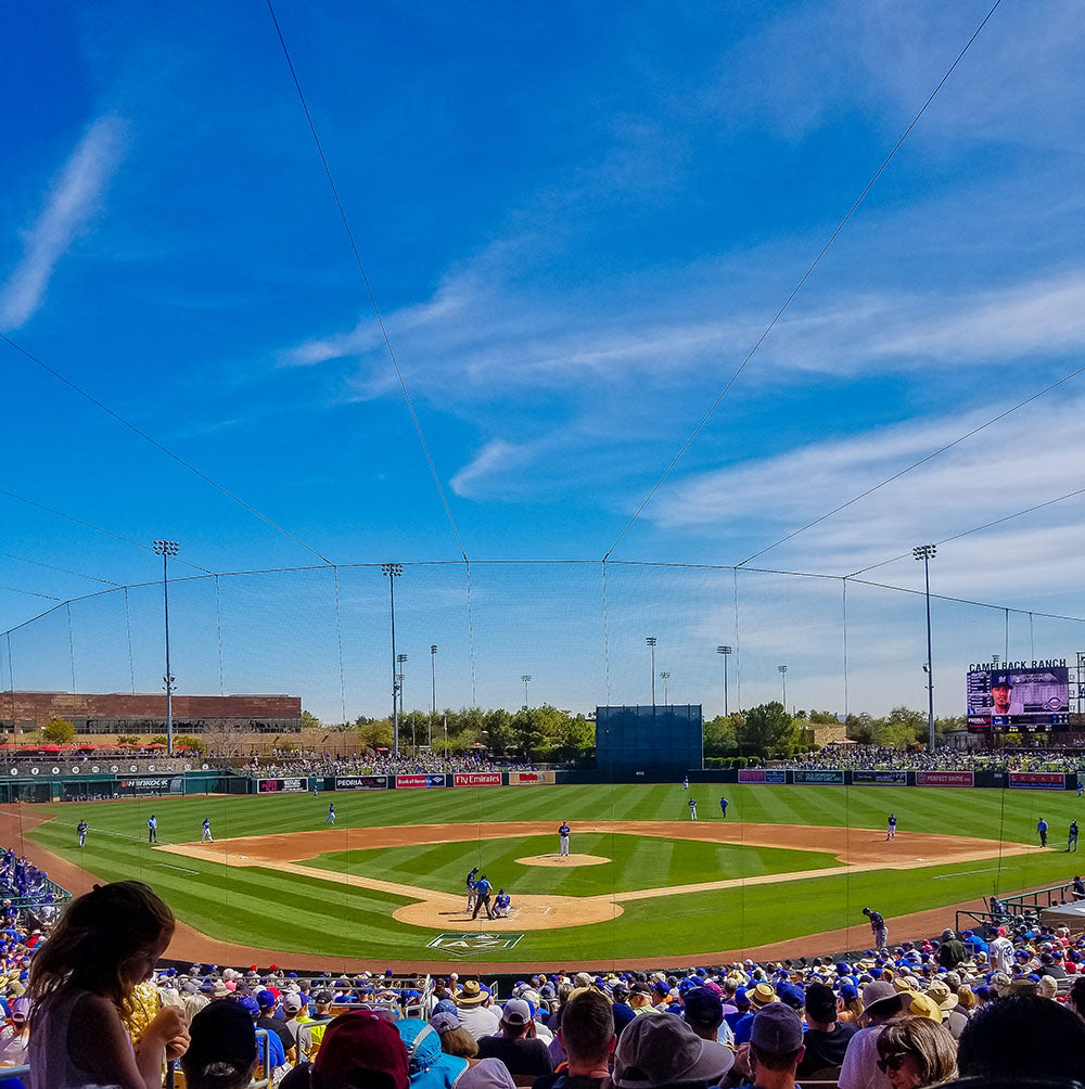 Taking in some Spring Training Baseball during our road trip to Arizona via Davis Taylor Trading Co.