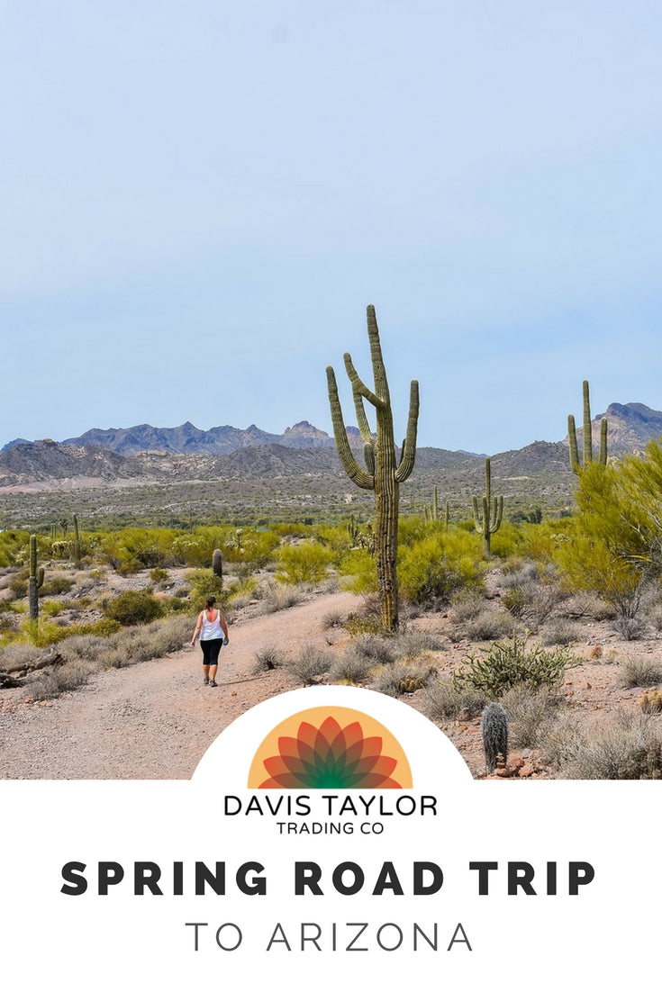 Take a spring road trip to Arizona with Davis Taylor Trading Co. Fun times in the sun filled Arizona desert.