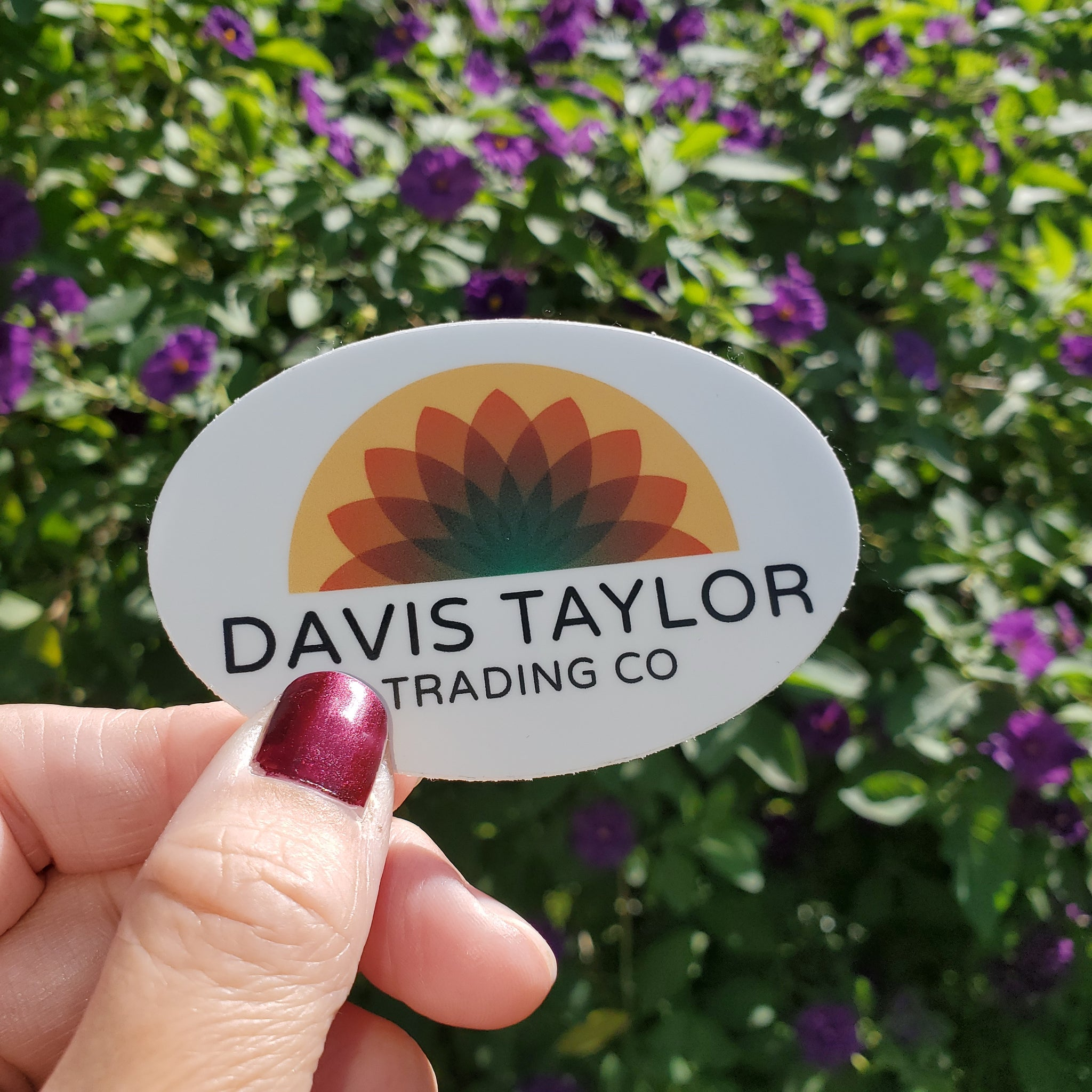 Davis Taylor Trading Co Sticker