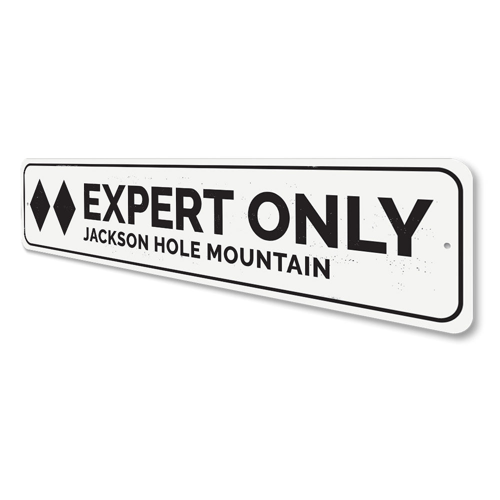 Double Black Diamond Ski Sign Aluminum Sign