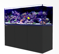 Aquariums and Stands