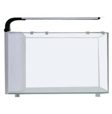 JBJ 6 Gallon Rimless Curved Glass Penninsula