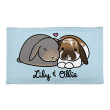 Lily and Ollie Rectangular Pillow Case only