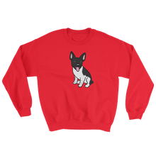 Jersey the Rat Terrier Sweatshirt