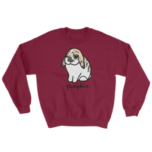 Pumpkin the Lop Sweatshirt