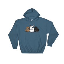 Luna Anders and Bella Hooded Sweatshirt