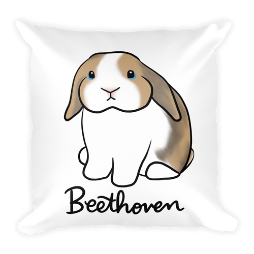 Beethoven The Lop Square Pillow