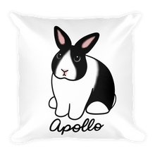 Apollo the Dutch Square Pillow