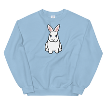 Zipper the Bunny Unisex Sweatshirt