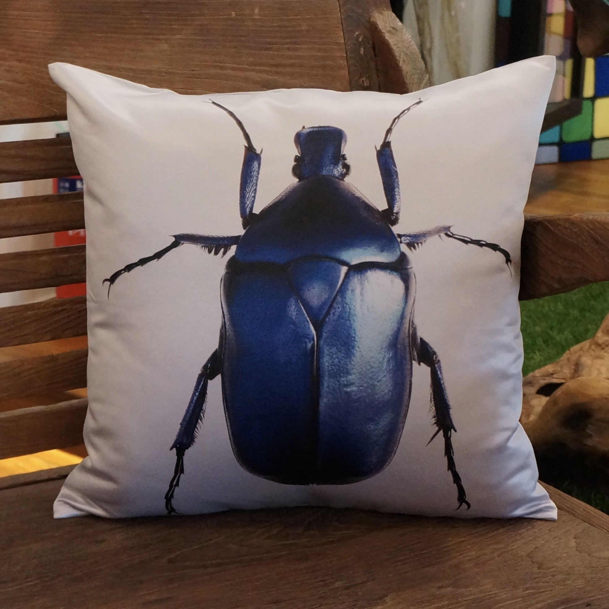 BEETLE CUSHIONS