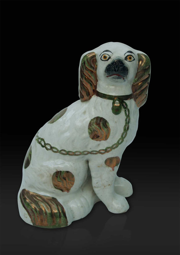 Staffordshire hearth Spaniel