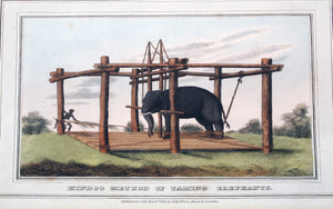 Samuel Howitt - Hindoo Method Of Taming Elephants
