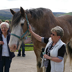 Royal Deeside PassporTour Things to see and do Travel guide for the Cairngorms and Aberdeenshire Braemar, Ballater, Balmoral, Aboyne, Banchory, Crathes ,horse welfare